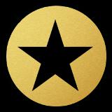 Star Icon sm(Pro)